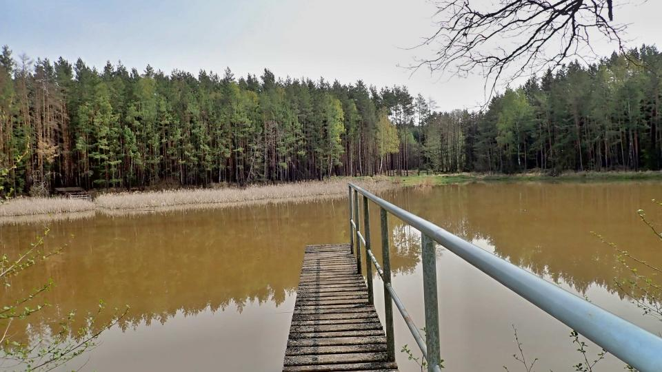 Jánský les najdete mezi Sulislaví, Sytnem a Stříbrem. Nedaleko je také rybník, který se rovněž jmenuje Jánský, ale mezi domácími se mu říká Křivý