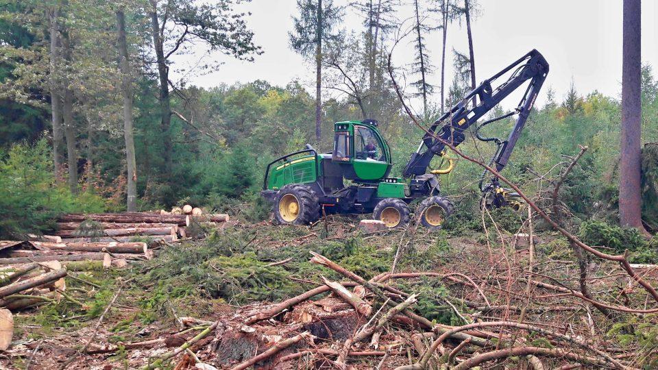Rekordní ztrátu letos očekávají Dobřany na jižním Plzeňsku v lesním hospodaření. A to především kvůli kůrovci, který decimuje okolní lesy. Z původně plánovaných 3500 kubíků vytěženého kůrovcového dřeva bude na konci roku téměř 6000 kubíků