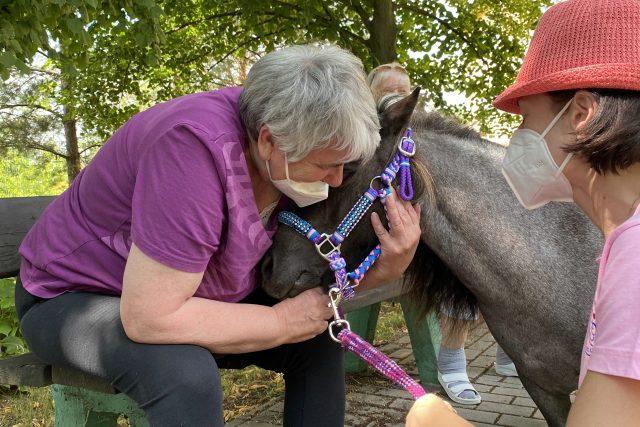 Ponyterapie v v Domě pro zdravotně postižené v Horní Bříze | foto: Karolína Sedláková,  Český rozhlas,  Český rozhlas